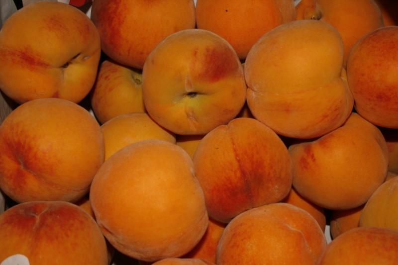 frio-mediterraneo-frutas_28